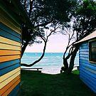 Brighton Beach Boxes by Niamh Scally