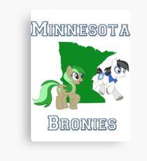 Minnesota Bronies Canvas Print