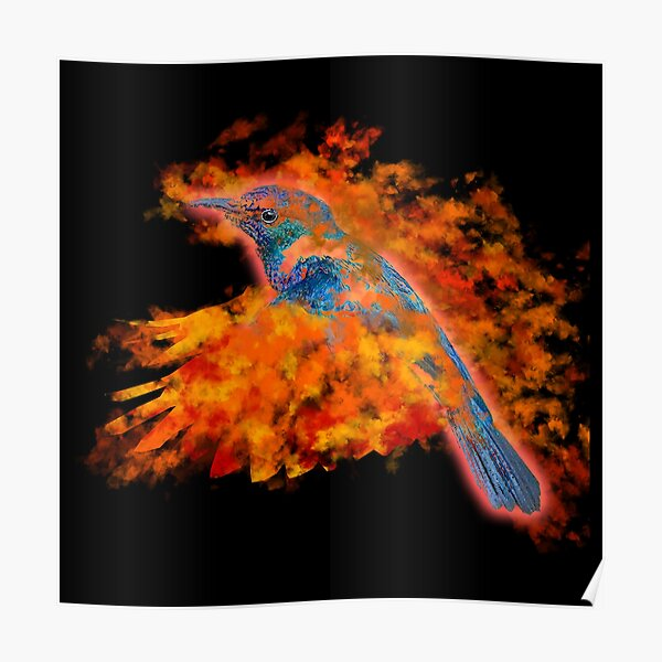 Ellie the Flaming Hummingbird Poster