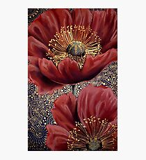 Red Poppies II Photographic Print