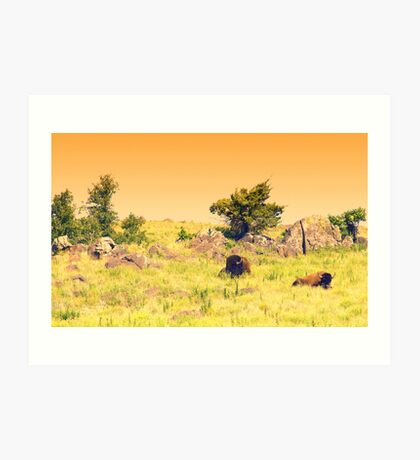 Buffalo Landscape Art Print