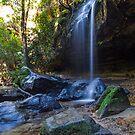 Horseshoe Falls by Ryan Conyers