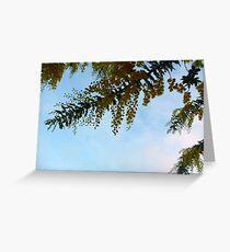 292/365 uplifting Greeting Card