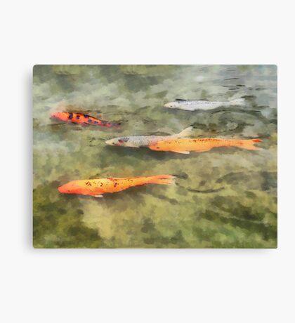 Fish - School of Koi Canvas Print