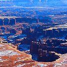 Canyonlands hoodoos by Alex Call
