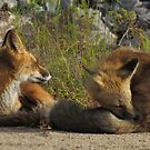 Chilla and Kaiwak, mom and daughter by Alex Call