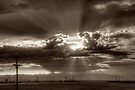 Denver Sunset by Bill Wetmore