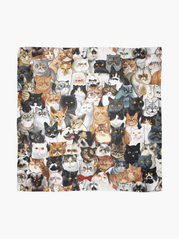 Alternate view of #Catminaproject by Jimiyo Scarf