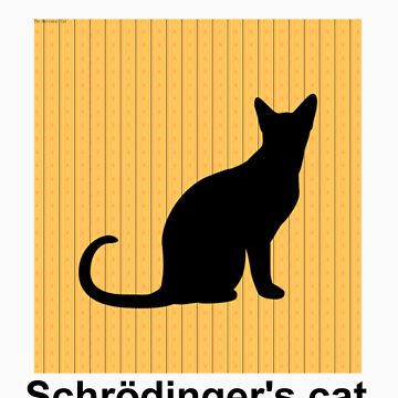 Schrödinger's Cat Poster by therationalcat