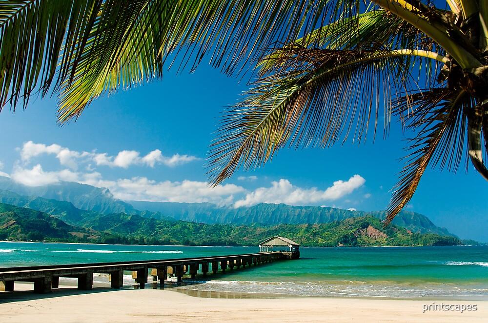 Hanalei Bay Pier,  Kauai by printscapes