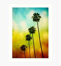 4 Palms Art Print