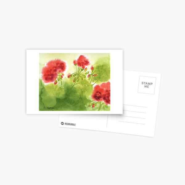 Geraniums 5 Postcard
