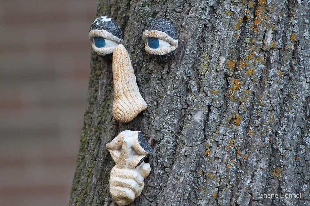 Yggdrasil by Shane Bonnell