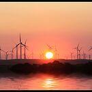 Sunset and windmills  by Kimberly Palmer