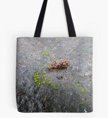 3_04_05_P1220542 Tote Bag