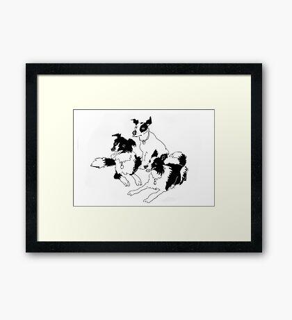 Billy, Angus and Meg (2) Framed Print