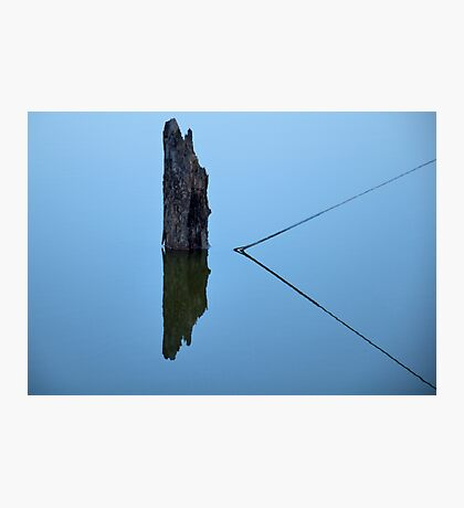Guy Wire Photographic Print