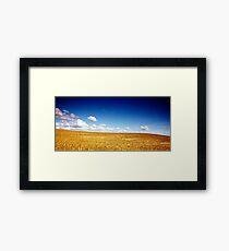North Yorkshire Cornfield 1 Framed Print
