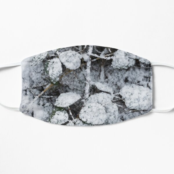 Snow Covered Fern Flat Mask