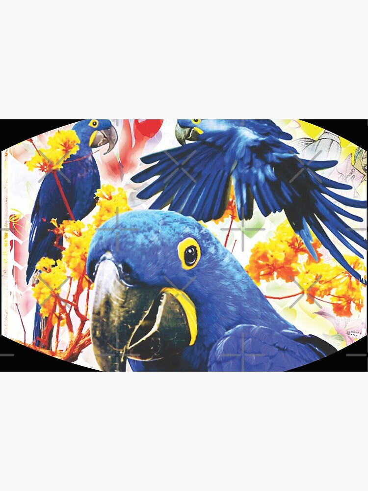 Parrot Design by Mbranco