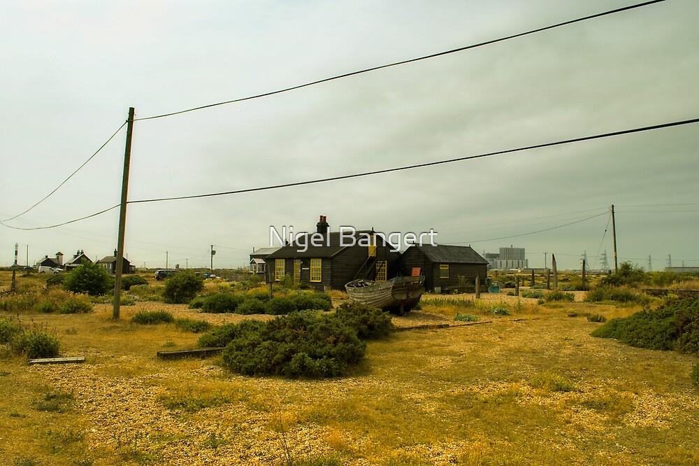 Prospect Cottage by Nigel Bangert
