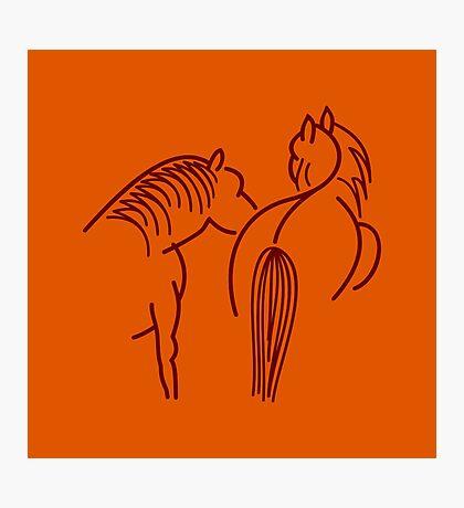 Two Horses (dark brown) VRS2 Photographic Print
