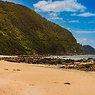 Beach near Lorne on Australia's Great Ocean Road Coast by jamjarphotos
