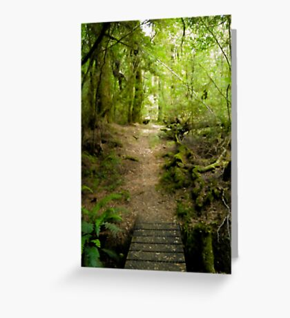 Philosopher Falls Track Greeting Card