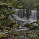 Horseshoe Falls. (Tasmania) by Warren  Patten
