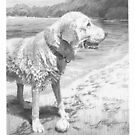 Dog memorial drawing by Mike Theuer