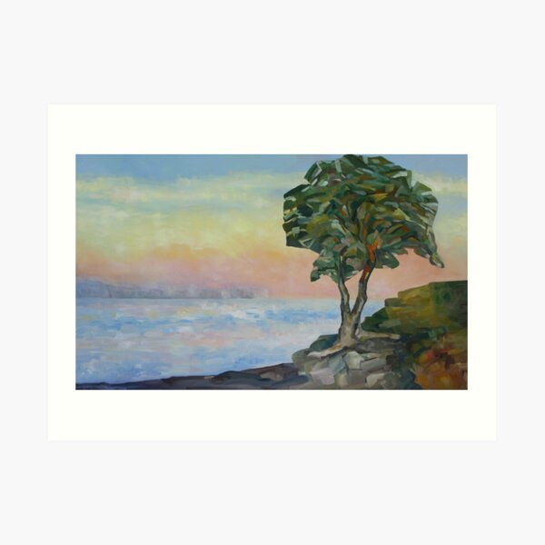 Evening and the Arbutus Tree  Art Print