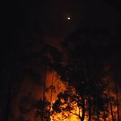Night Burn... by debsphotos