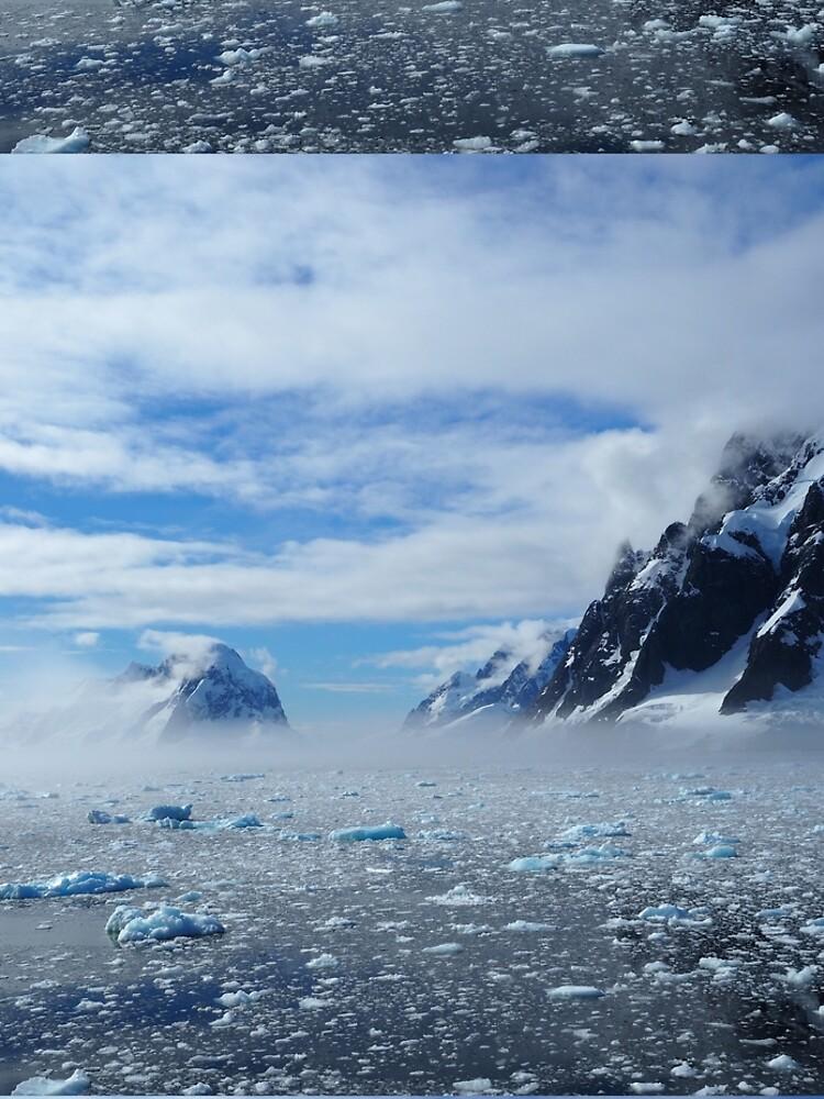 Protect Antarctica by AntarcticShop