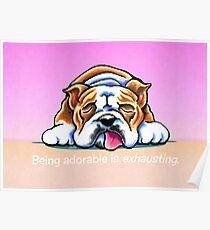 Being Adorable Bulldog Pink Poster