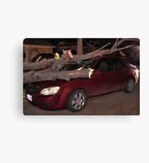 ☝ ☞ AFTER EFFECTS OF STORM DISASTER☝ ☞ Canvas Print