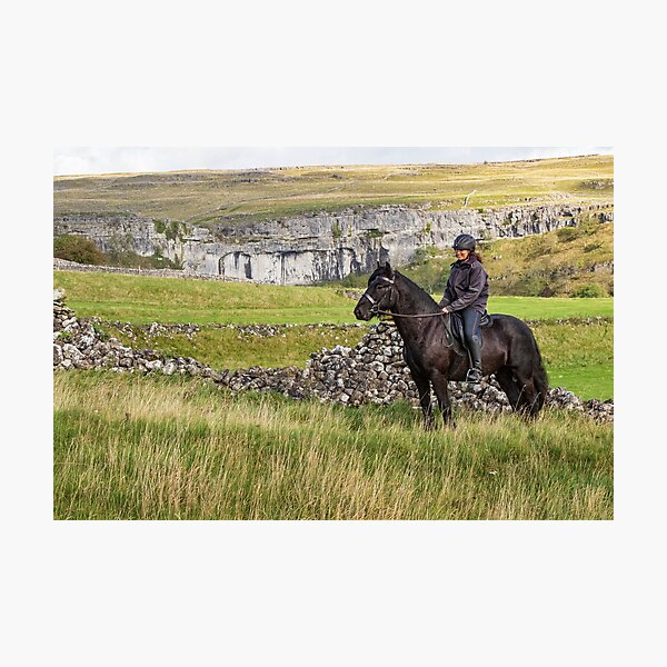 dales pony Photographic Print