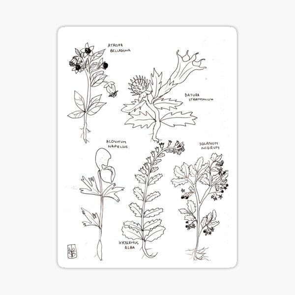 poison plants Sticker