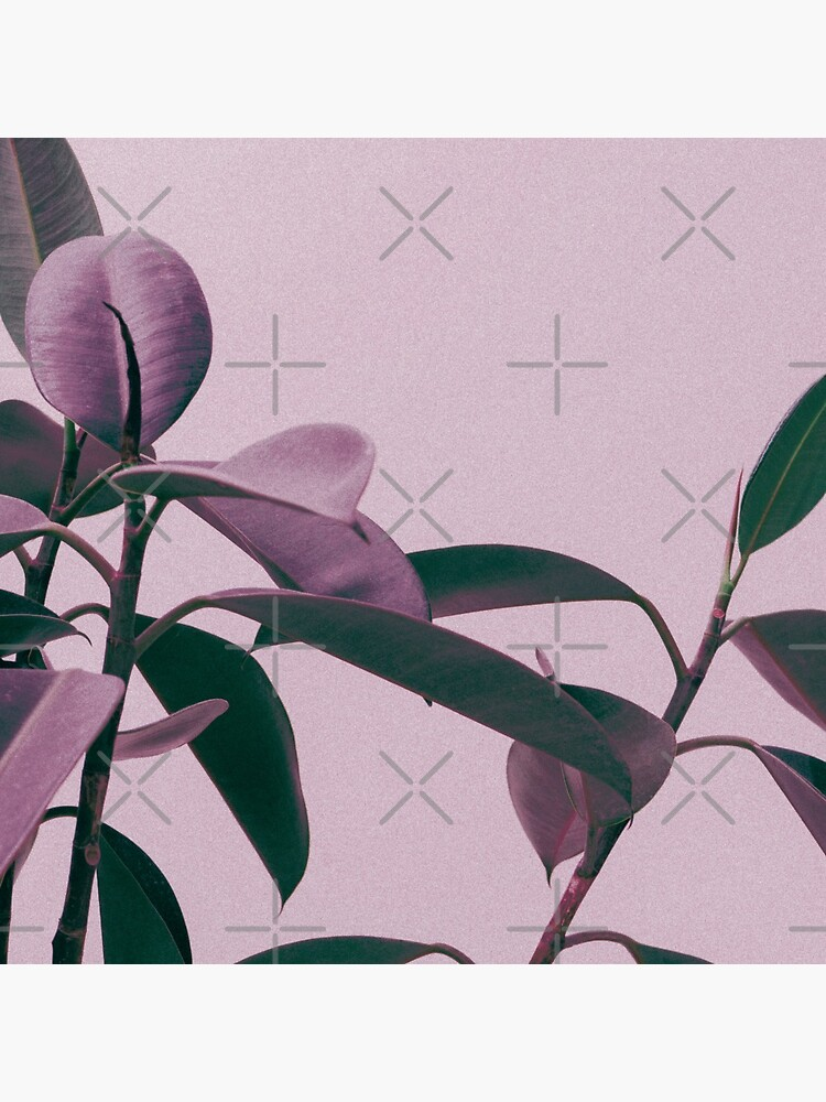 Purple summer leaves by ColorsHappiness