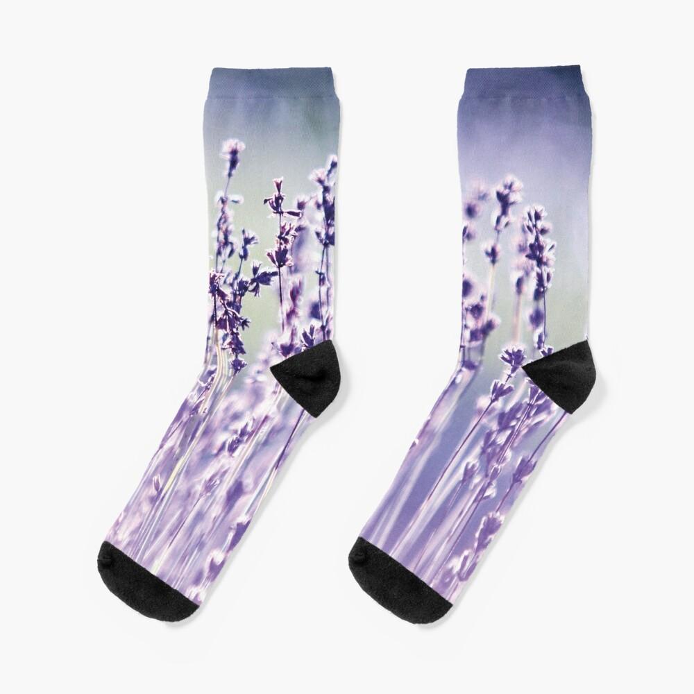 Purple summer field, lavender Socks