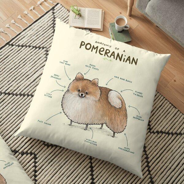 Anatomy of a Pomeranian Floor Pillow