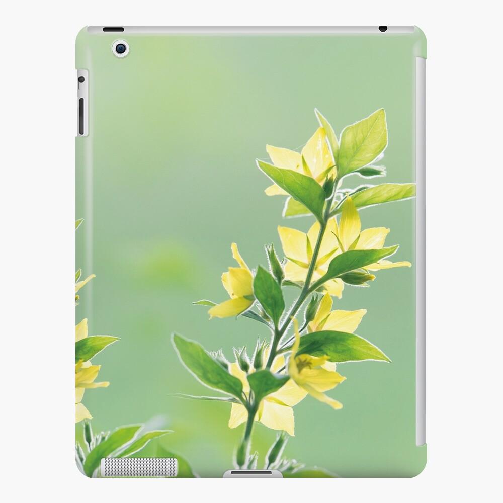 Fresh green botanicals iPad Case & Skin