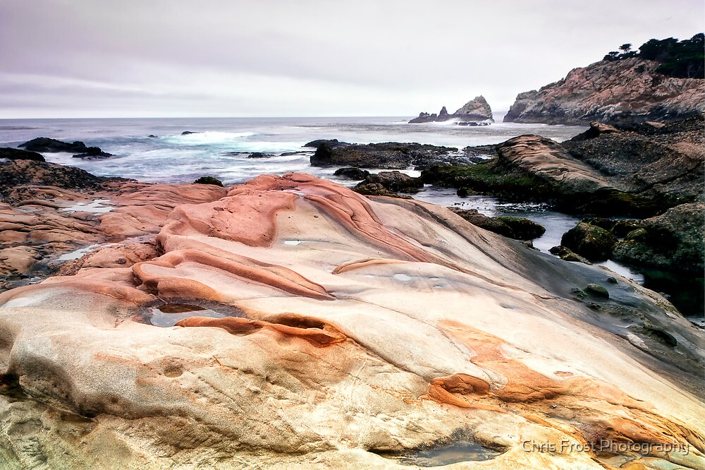 Point Lobos State Park by Chris Frost Photography
