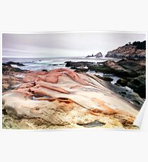 Point Lobos State Park Poster