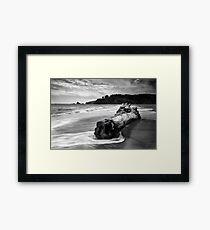 Navarro Beach State Park Framed Print
