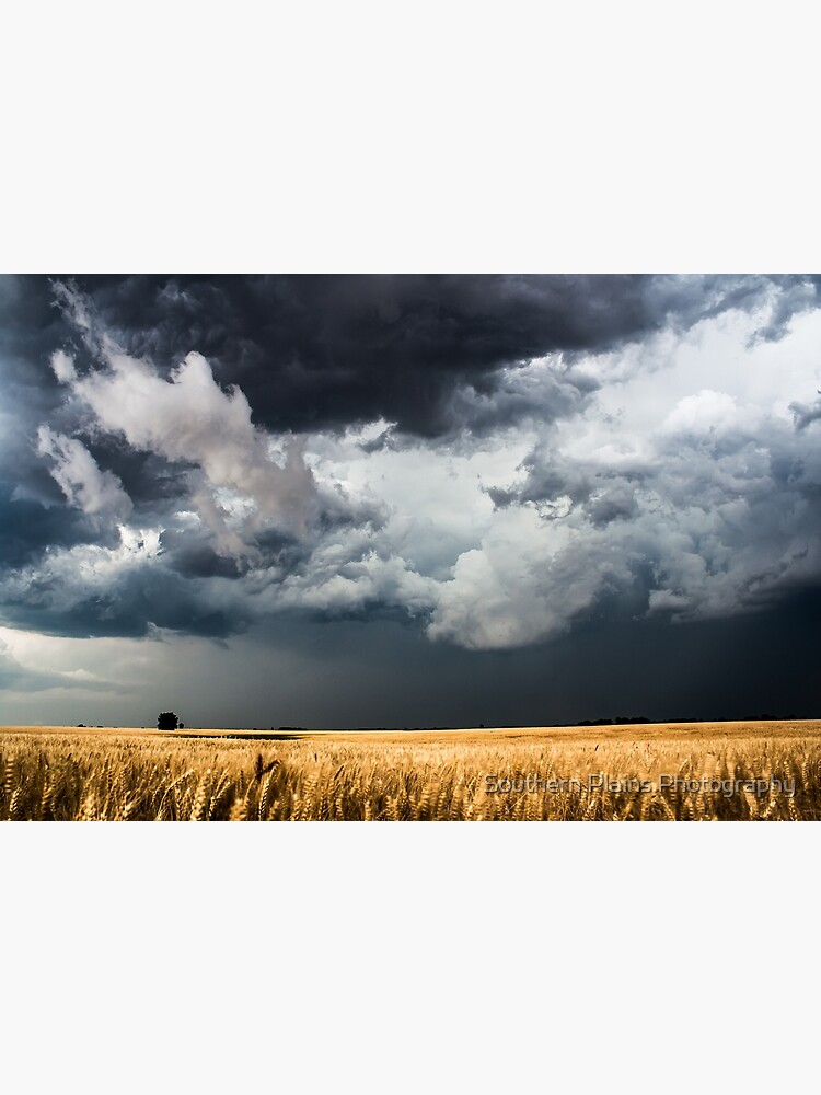 Cotton Candy - Storm Clouds Gather Over Golden Wheat Field in Kansas by SeanRamsey