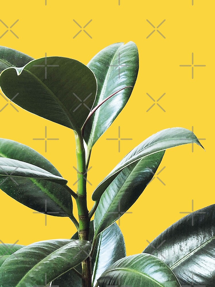 Graphic green botanicals, yellow background by ColorsHappiness