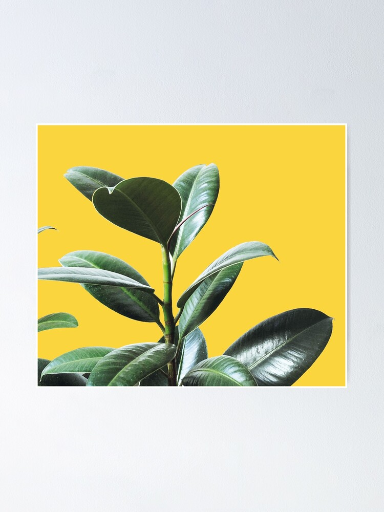 Alternate view of Graphic green botanicals, yellow background Poster