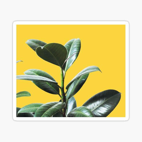 Graphic green botanicals, yellow background Sticker