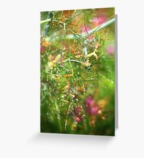 Helios Garden Greeting Card