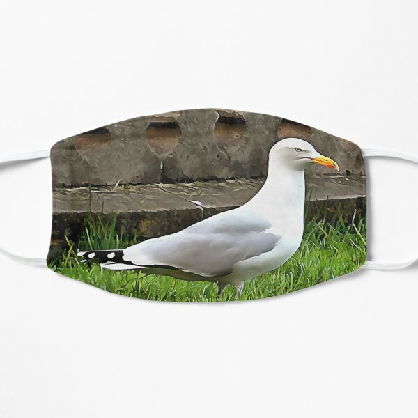 Brighton Seagull Mask